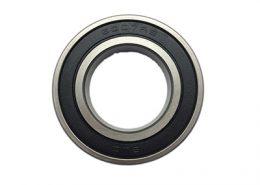 bearing 6007rs