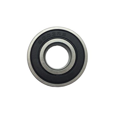 bearing 6202rs
